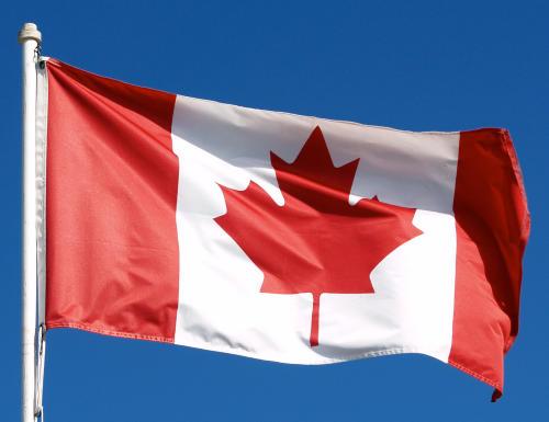 Local Search Rank Checker - Canada!