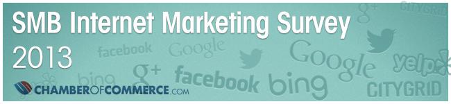 2013 SMB Internet Marketing Survey