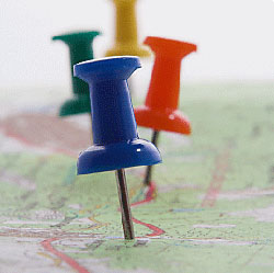 Tips for Successful Local Search Reporting