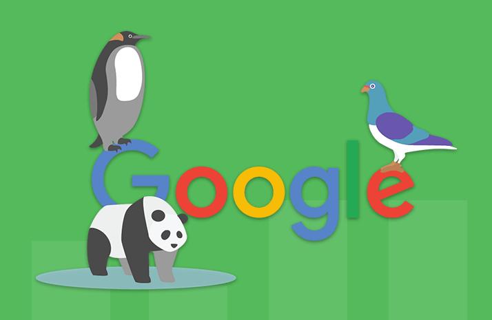 The Human Impact of Google Algorithm Updates