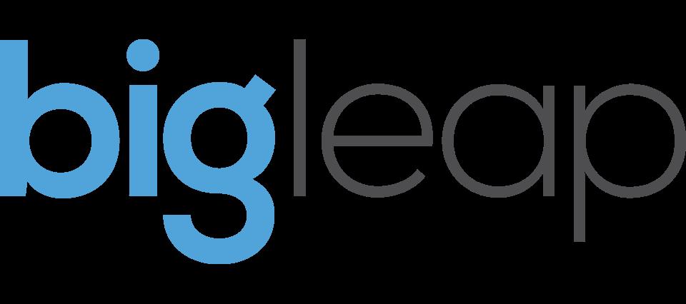 Big-Leap-Logo
